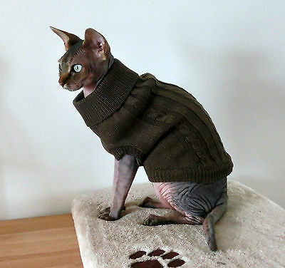 sizes Winter sweater coat top for a Sphynx cat - cat clothes Katzenbekleidung