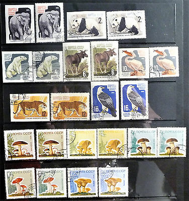 USSR Russia Soviet Union 1964 Moscow Zoo Mushrooms Set Of Stamps used lot927