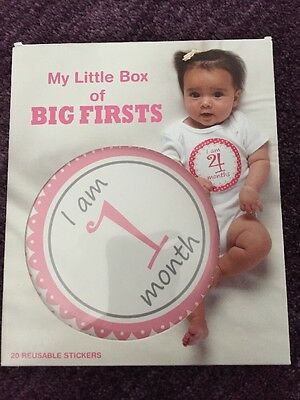 New Baby Girl Month Stickers Little Box of Big First