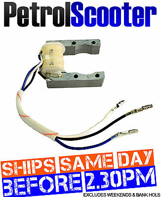 2t 2 Stroke Petrol Bicycle Motorised 50cc 60cc 80cc Stator Magneto Ignition Coil