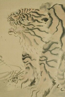 Hanging Scroll Japanese Painting Tiger Old Picture Ink  Antique Japan art a991