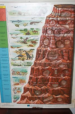 3-D Earth History Raised Relief Hubbard Scientific Educational Vintage 1960s