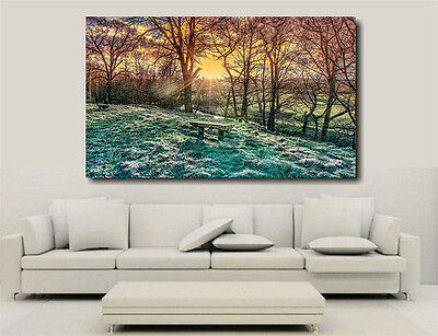 Chatsworth Landscape Canvas Wall Art picture A1 Limited Edition Hand Signed
