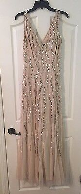 Size 6 Long Gown Aidan Mattox