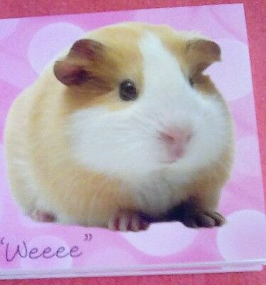 Guinea pig note bed