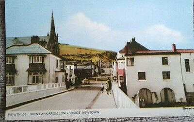 BRYN BANK, NEWTOWN, from the long. Bridge (old postcard)