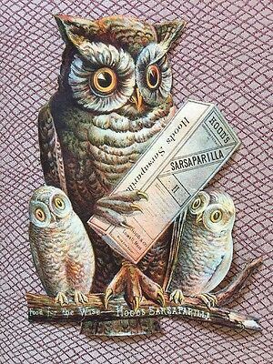 1880s Hood's Sarsaparilla Hand Trimmed Victorian Scrap Wise Owl Trade Card 8""