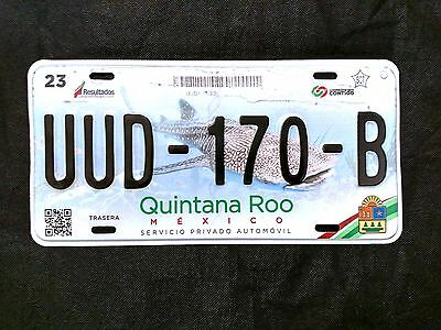 State of STATE OF ROO License plate Expired Graphic Background CANCUN !!!