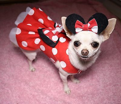 Handmade Dog Dress For Small Dogs - Disney Minnie Mouse - Puppy Chihuahua