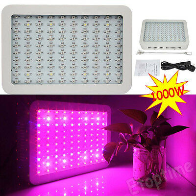 Double Chips Full Spectrum 1000W LED Grow Light For Hydroponics Vege Plant Newly