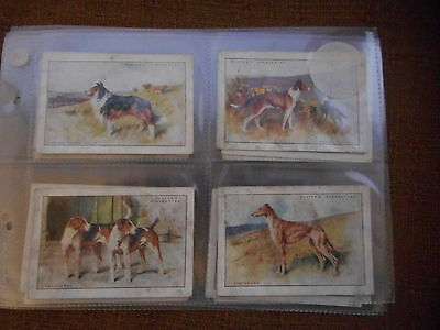 Full Set Cigarette Cards - Players Dogs Xl Sized