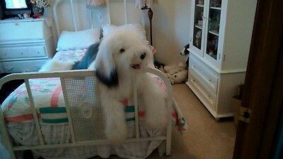 Larger then life size Old English Sheep Dog Plush stuffed 46 inches long