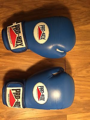 Pro Box Superstar 18oz Sparring Boxing Gloves Perfect Condition, Used Once Blue