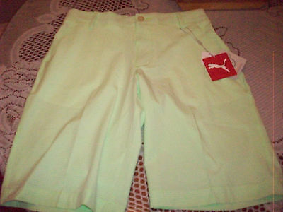 Womens Puma Dry cell tech golf shorts Sz L Large NEW WITH TAGS NWT green gecko 1