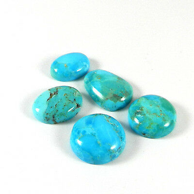 Wholesale Price 5 Pcs Natural Turquoise 9gm Cabochon Jewelry Gemstone ER2403