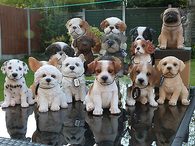 Vivid Arts Collectable Puppy Range - Garden Ornament - Pet Pals With Carry Box.