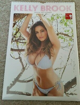 Kelly brook Official A3 Calendar 2017 - Brand new and sealed