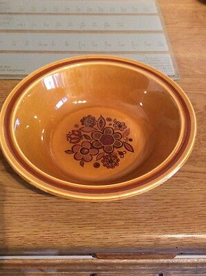 royal worcester palissy Bowl