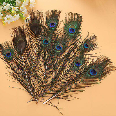 10Pcs New Natural Beautiful Peacock Feathers 25-30cm Inch Decoration Home Decor
