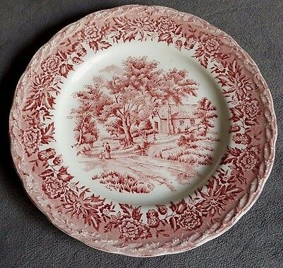 Vintage W.H.Grindley 'Country Style' Side Plate in Lovely Condition