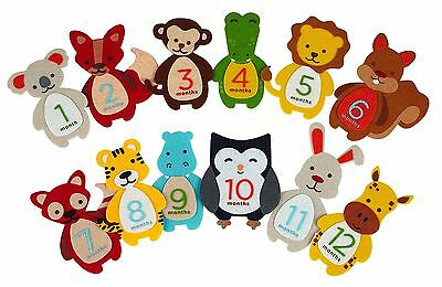 Pearhead First Year Monthly Milestone Felt Animal Photo Sharing Baby Belly NEW