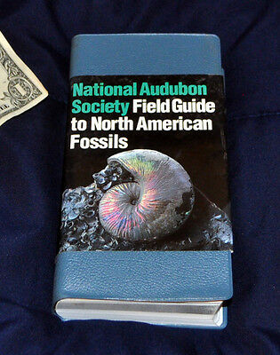 Audubon Society Field Guide to North American Fossils 1995