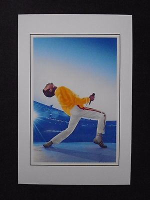 6X4 Gloss Photo of Freddie Mercury Performing (Queen)  (7)