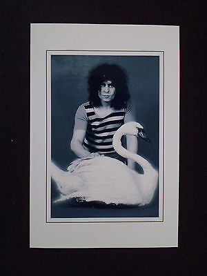 6X4 Gloss Photo of Marc Bolan    (10)