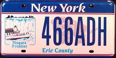 """NEW YORK """" NIAGARA FRONTIER """" EMPIRE STAATE Graphic License Plate FREE US SHIP"""