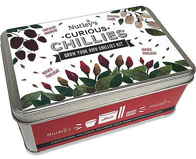 Nutley's Curious Chillies Grow Your Own Starter Kit Gift Tin 3 Varieties Spicy