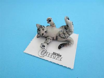 "New Little Critterz Cat ""poupouce"" Figurine Special Commissioned By Us Adorable"