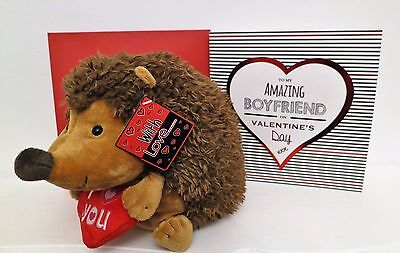 Lovely Gift Idea For Your Boyfriend On Valentines Day Hedgehog & Card,Fast Post