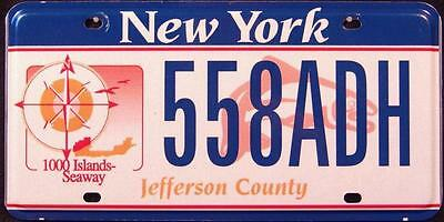 """NEW YORK """" 1000 ISLANDS """"  SEAWAY FISH NY Graphic License Plate"""