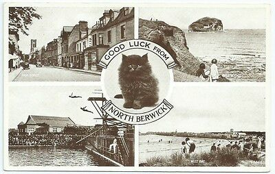Vintage Postcard. North Berwick Multiview. Unused. Ref:5811