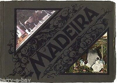 Vintage Photo Album of Madeira Very Rare and Collectible. Good condition. 1920's
