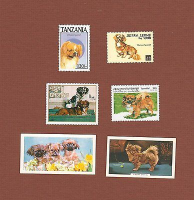 Tibetan Spaniel dog postage stamps and cards set of 6