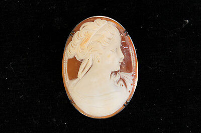 Authentic Shell Cameo Broach Silver Punch Mark Free Shipping 818f38