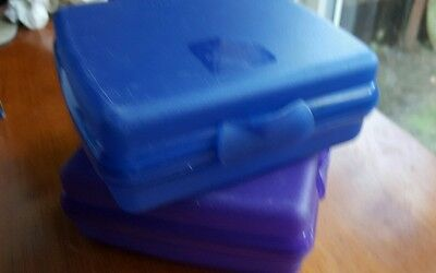 Tupperware Sandwich snack Keeper Lunch Container Blue and Purple,GREAT FOR KIDS