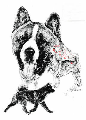 Akita Composite Limited Edition Print by Lyn St.Clair