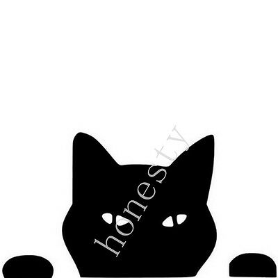 Pet Cat peeping Cat Fun Car Stickers And Decals Motorcycle Car decal black white