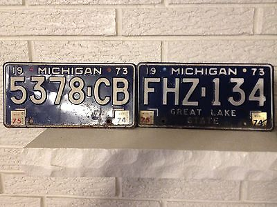 Matched Pair VINTAGE 1973 MICHIGAN LICENSE PLATE SET FHZ134 Great Lake State