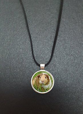 """Guinea Pig Pendant On a 18"""" Black Cord Necklace Ideal Birthday Gift N411"""