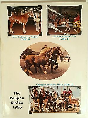 The Belgian Review 1993 Champion Horse Nabc Book