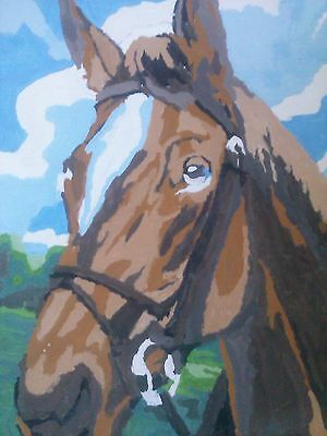 vintage paint by number brown horse head blue sky