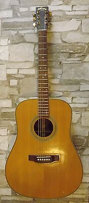 Aria Dreadnought AD-50 Solid top, back, sides: spruce & rosewood acoustic guitar