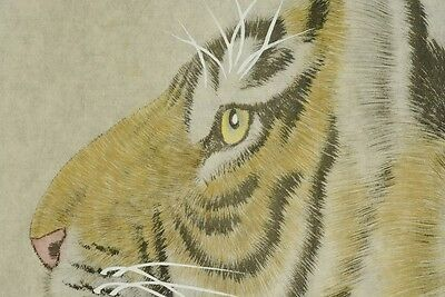 Chinese Painting Scroll Tiger Makuri Asian art Paint Asian Picture Ink Fine a873