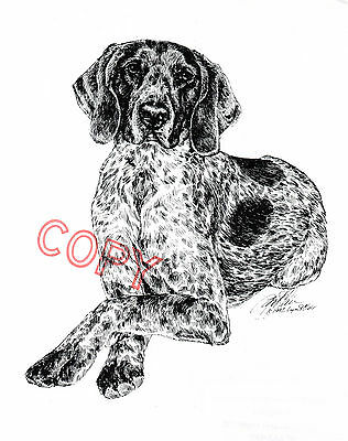 German Shorthaired Pointer Limited Edition Print by Lyn St.Clair