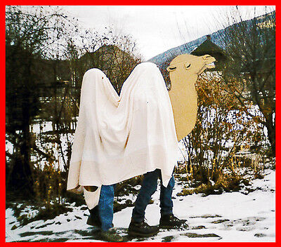 Instruction Manual Do-it-yourself Carnival Costume CAMEL 3 Persons pdf English