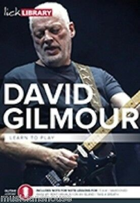 LICK LIBRARY Learn To Play DAVE DAVID GILMOUR BLUES PINK FLOYD Guitar DVD ROCK