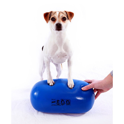 FitPAWS Mini Egg Canine Stability Ball